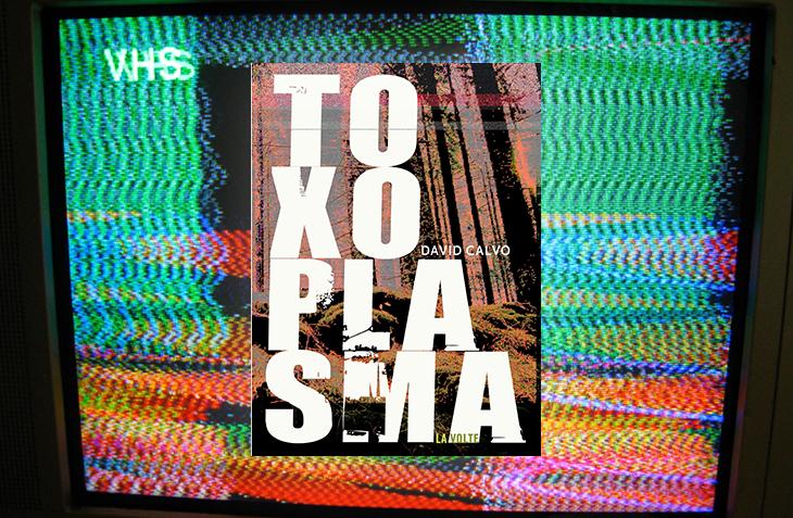 Toxoplasma, David Calvo