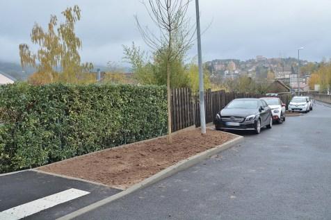 Plantation_Arbres_Rue_Rovel_Chemin_Côte_Calot (2)