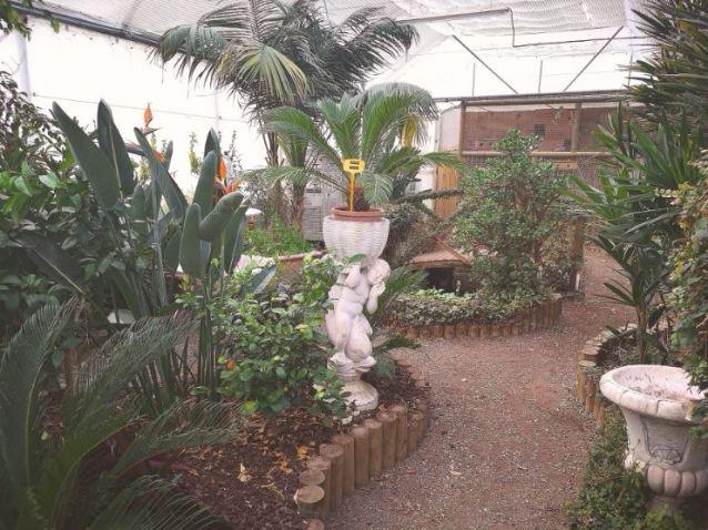 au jardin 1