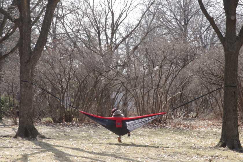 Relaxing on a hammock hung on the Summit Avenue boulevard.