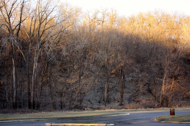 The view up the bluff toward Mississippi River Boulevard from the Hidden Falls Park lot. Once the leaves fully cover the trees, it will be virtually impossible to see even halfway up the slope.