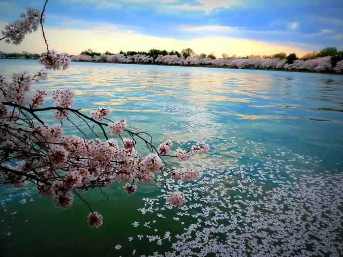 Photo credit: Zhaoyin Feng