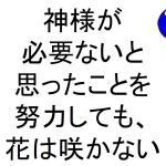 神様が必要ないと思ったことを努力しても花は咲かない斎藤一人|仕事がうまくいく315のチカラ351