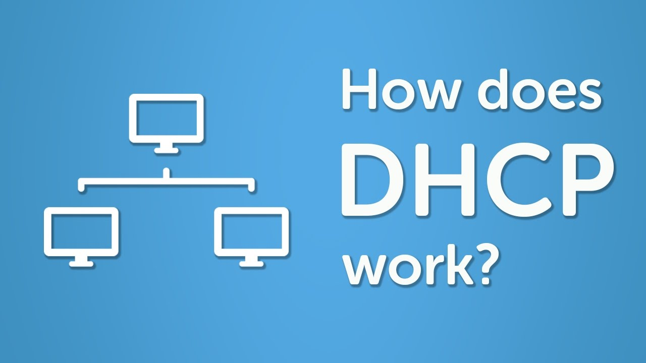 dhcp-banner