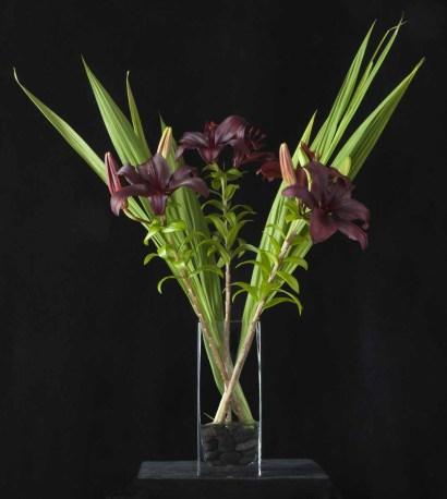 braiden_blossoms-Flowers 2 Jul_2012