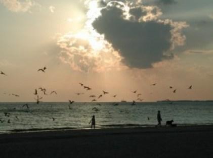 people-on-the-beach