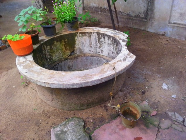 still fascinated with this well, rains in good old days used to fill it in three straight days