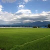 小樽から富良野へ〜富田ファーム〜