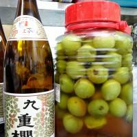 お遊びで、「九重櫻」でも一瓶漬けてみることに。こちらは本みりんです。