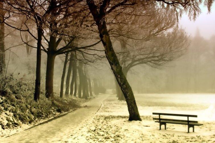 зима,снег,зимняя дорога
