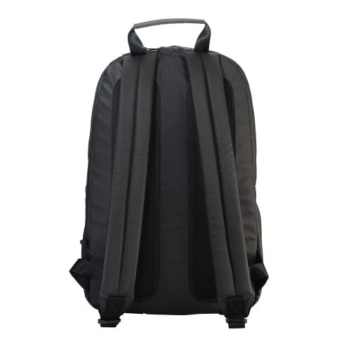 black_back_1