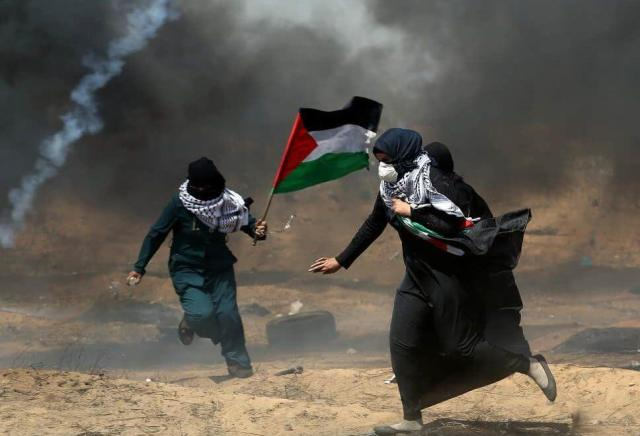 How is Palestine?