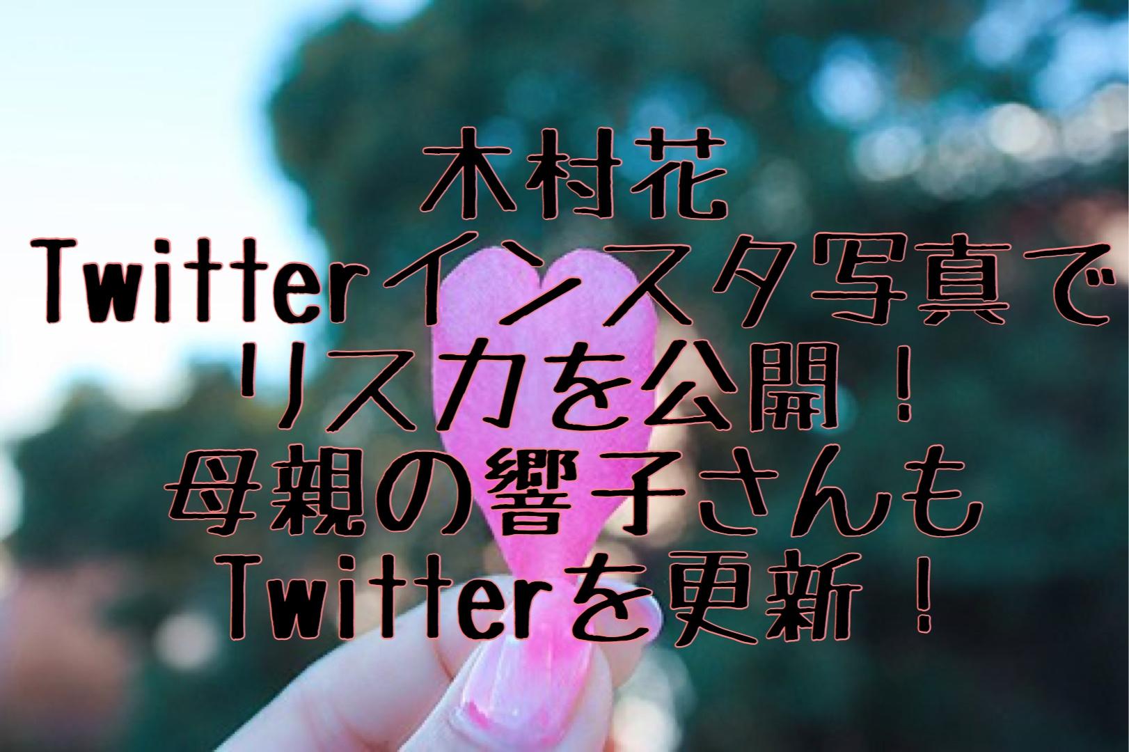 木村 花 ツイート