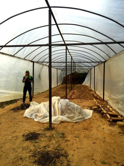Greenhouse to facilitate growing of vegetables.