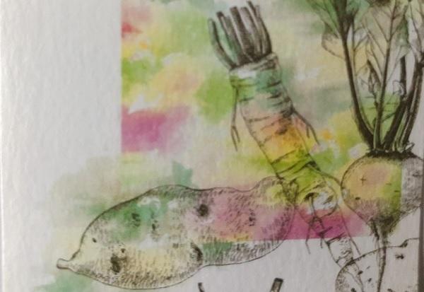 土と芋と野菜のオクドさま