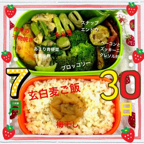 今日のダイエット弁当(2012年7月30日)