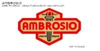 Ambrosio_rimdecal_2013proof