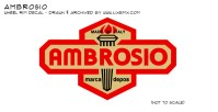 Ambrosio_rimdecal_2013proof