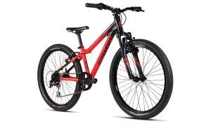 bike-ramones24-ang