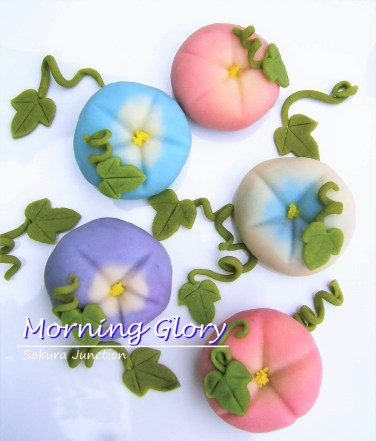 Morning Glory top