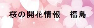 桜の開花情報福島