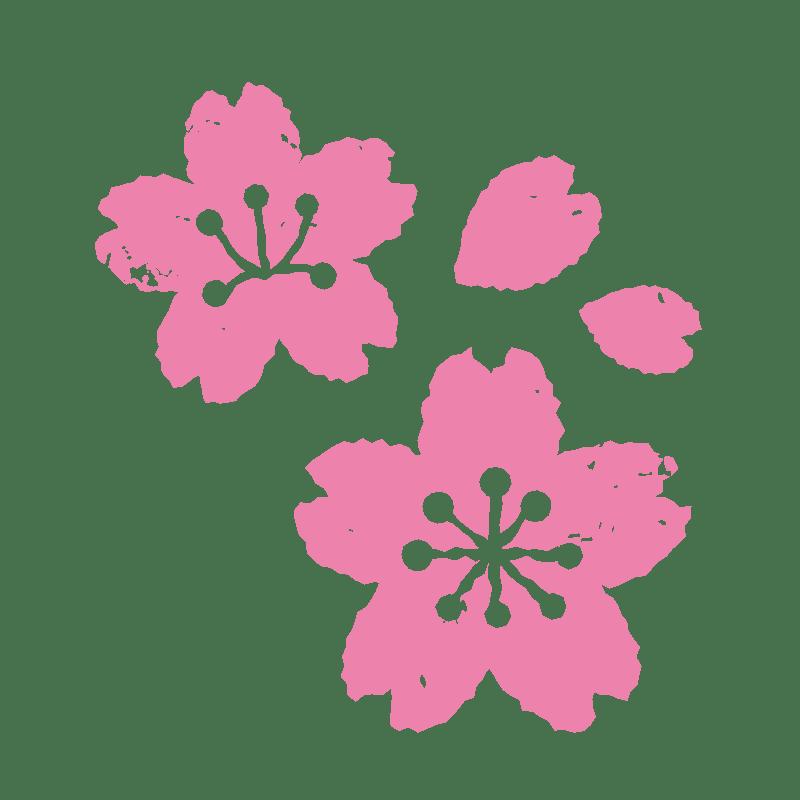 日本気象協会桜開花予想