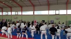 Présentation du Nihon-Taï-Jitsu lors de la Journée Olympique à Saint-Orens en Juin 2017
