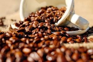 コーヒー豆珈琲