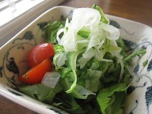 大根、ゴーヤ、水菜のサラダ