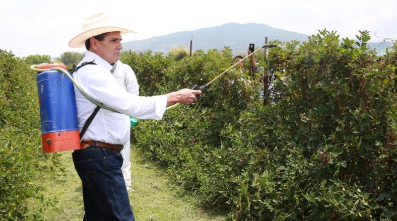 #RuidoEnLaRed Apuestan por fertilizantes naturales para el cuidado del medio ambiente