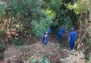 Gobierno de Morelia continúa con atención al medio ambiente
