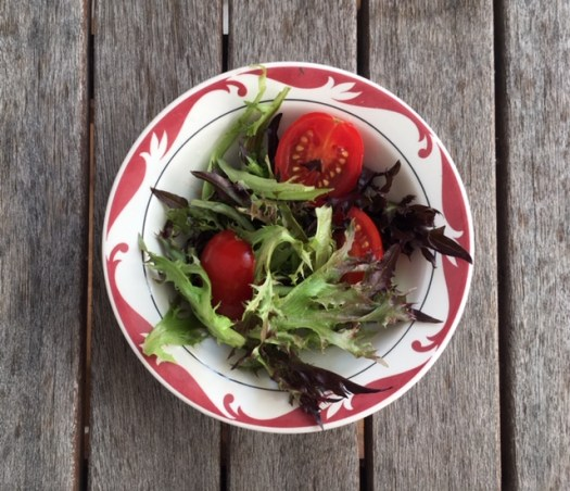 petit bol de salade verte à la laitue cancan photo marie g