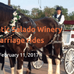 Romantic Salado Winery Carriage Ride