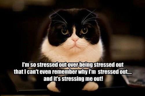 Sweating Away the Stress #MotivateMe
