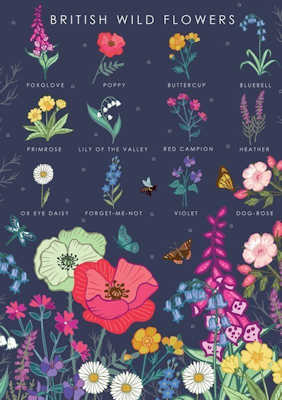 British Wild Flowers Collection Card, by Heart of a Garden