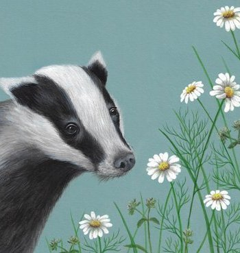 Badger Card by Heart of a Garden
