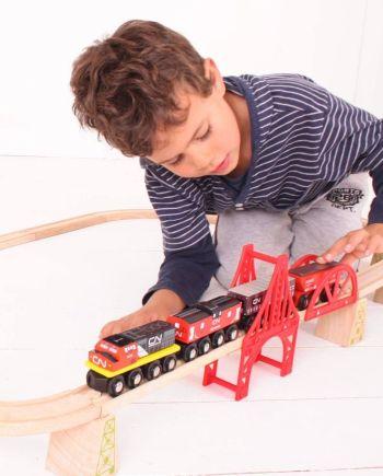 BRIO & Bigjigs Trains