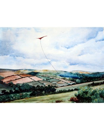 The Kite Card on Dartmoor