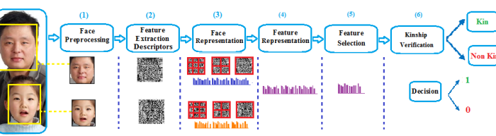 LPQ and LDP Descriptors with ML Representation for Kinship verification