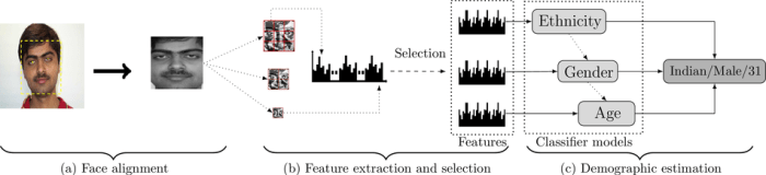 Pyramid Multi-Level Features for Facial Demographic Estimation