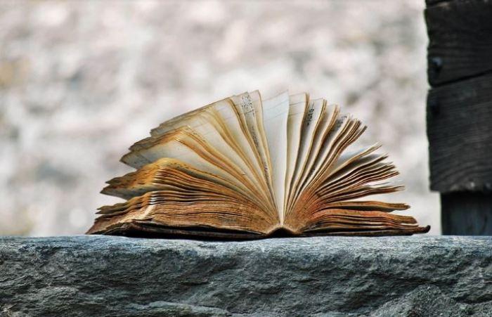 10 Contoh Autobiografi Diri Sendiri Terlengkap Salamadian