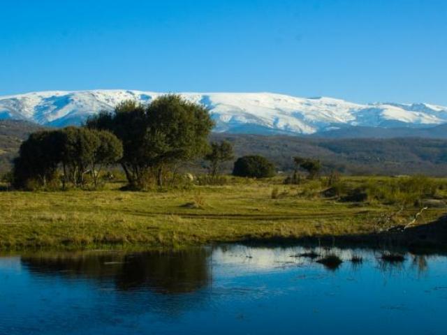 sierra_de_bejar-7321
