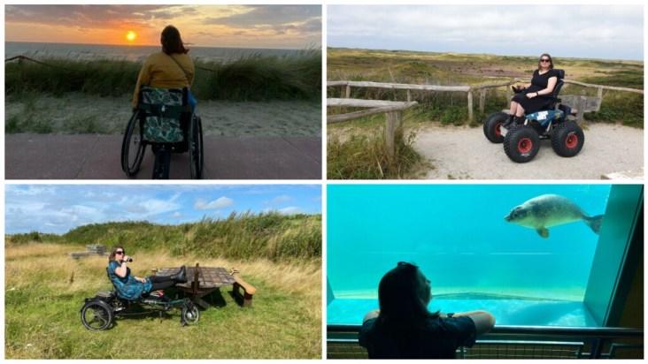 4x Texel: uitkijkend over de zee, in de duinen met een Cadweazle, op de fiets en kijkend naar een zeehond bij Ecomare.