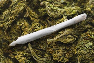 marijuana-kosher-joint-1217[1]