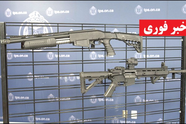 A Dagger Sap6 12-gauge shotgun and Anderson AM 15-M4 rifle seized by police