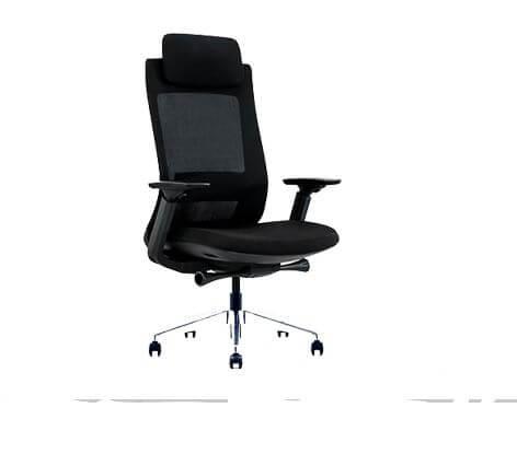 Luxury Ergonomics Office Chair