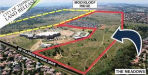One of the biggest properties that will go under the hammer next month is Plastic View informal settlement, bordered by red. The yellow line borders vacant land also set to be auctioned.