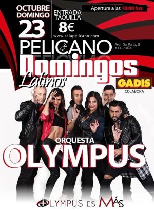 domingos latinos olympus pelicano