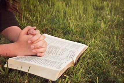 bible - rhegan post