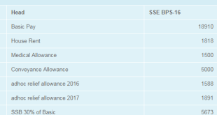 PAY CHART FOR SECONDARY SCHOOL EDUCATORS – SSE BPS-16 for 2017